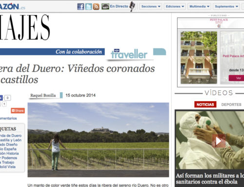 Ribera del Duero: Viñedos coronados por castillos