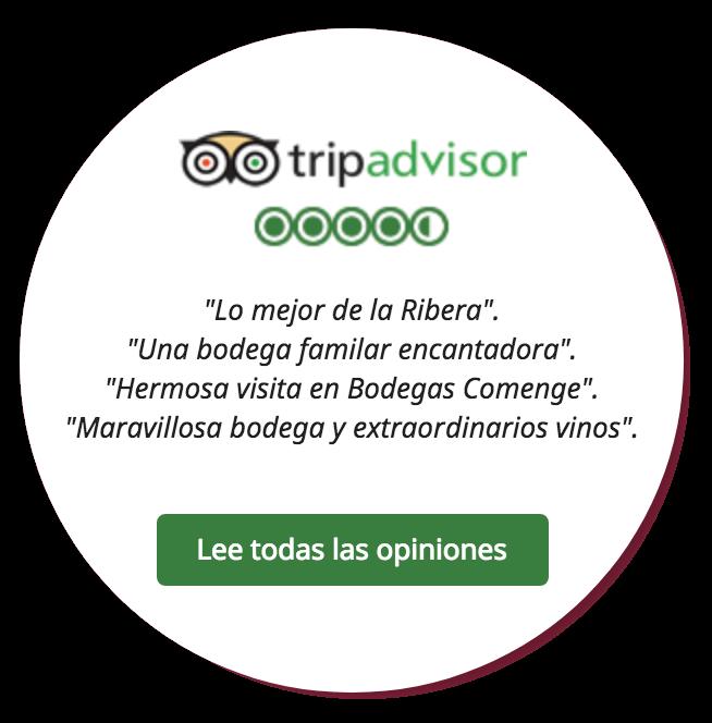 Leer opiniones Tripadvisor