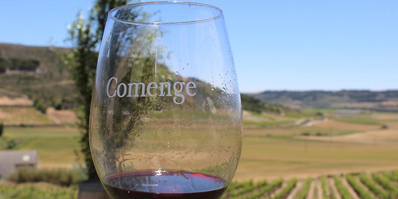 Temperatura se sirve el vino
