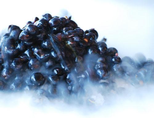 'Freshwines', un proyecto innovador para mejorar la frescura de los vinos