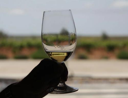 ¿Quién decide cuánto se sirve en una copa de vino?