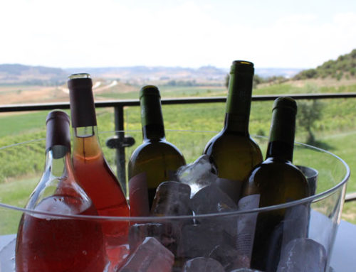 ¿Cómo enfrío el vino?