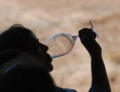 El lenguaje de las catas de vino