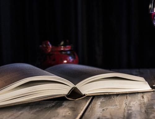 Vino y literatura: dos términos cuyo orden no altera el interés por su lectura